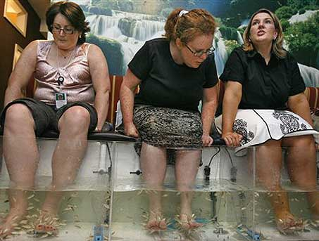 Fish pedicure cheap wine and panty lines for Fish pedicure dc