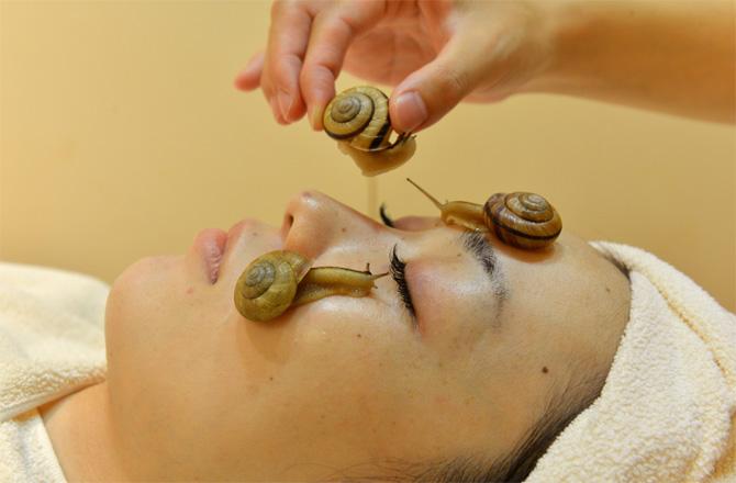 snail-face-670x440-130714